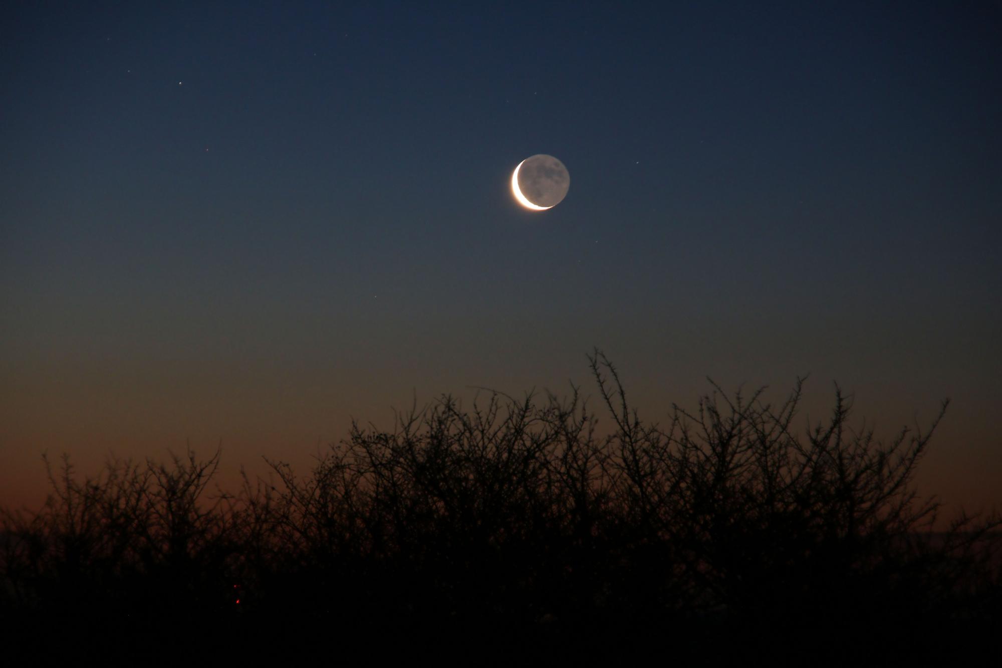 3 b Lune cendrée 1155B1N1 send.jpg