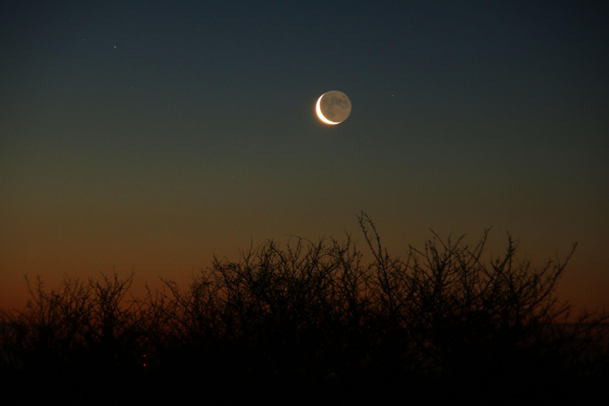 3 c Lune cendrée 1156B1N1 send.jpg