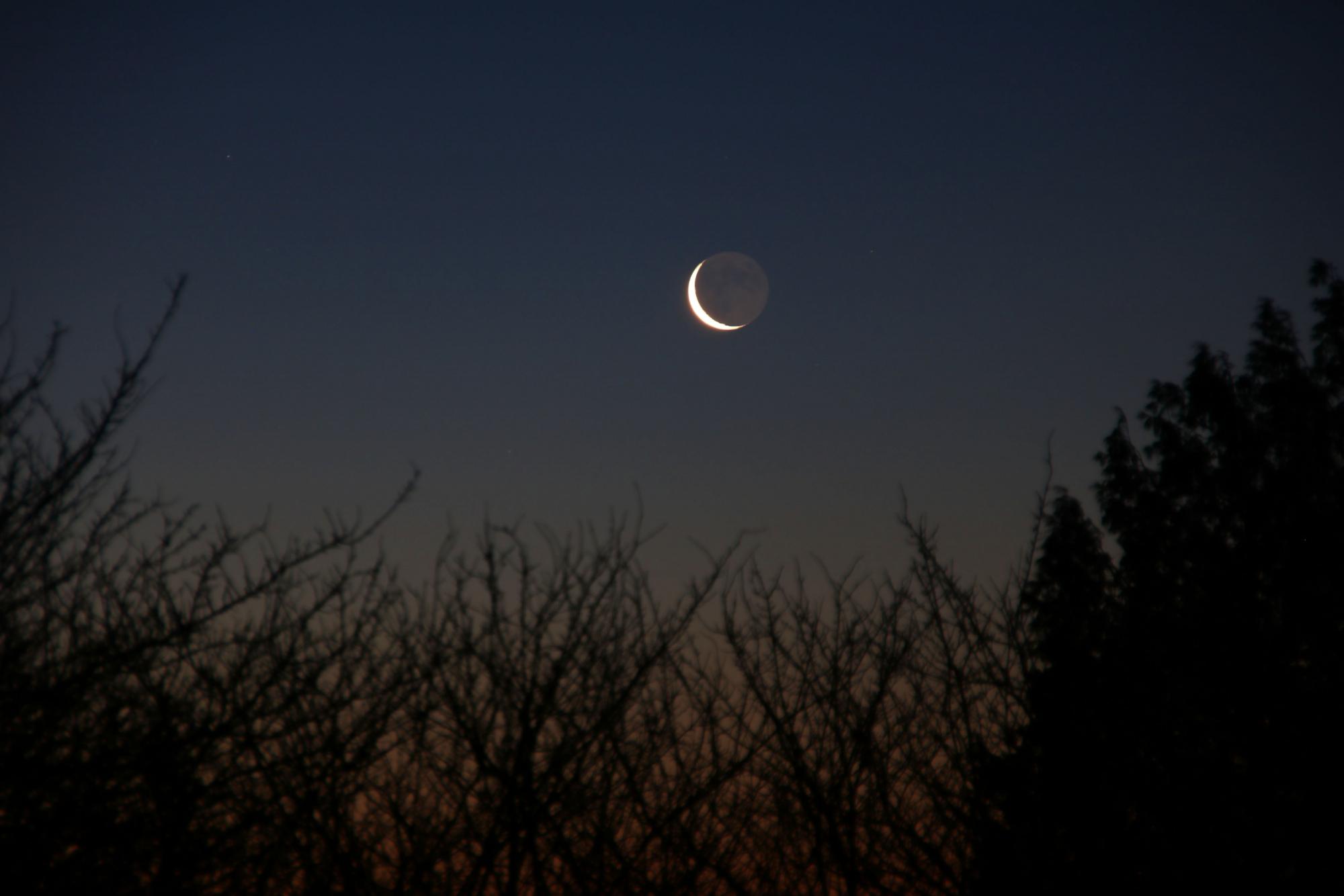 5 Lune cendrée 1181B1N1 send.jpg