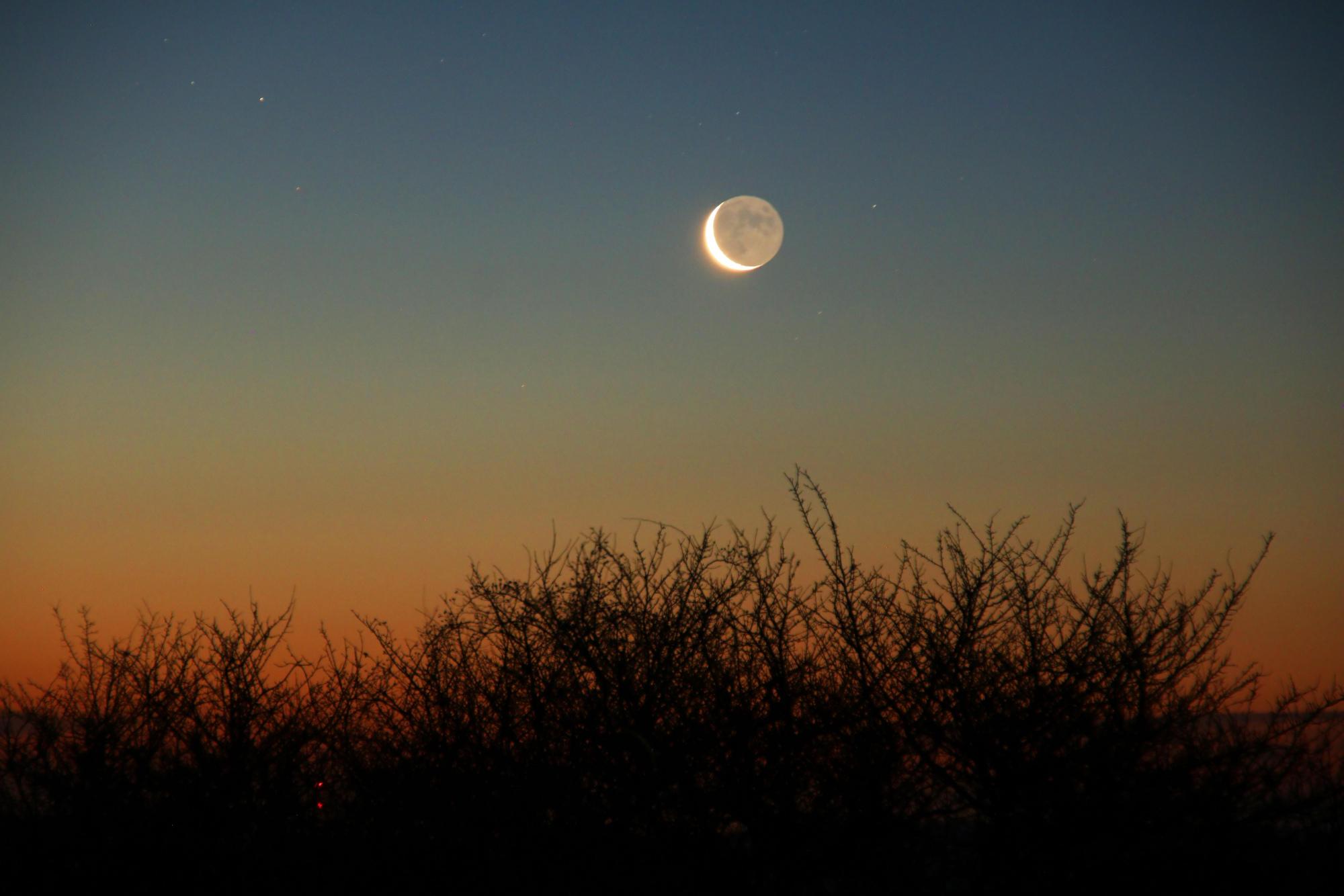 4 Lune cendrée 1157B1N1 send.jpg