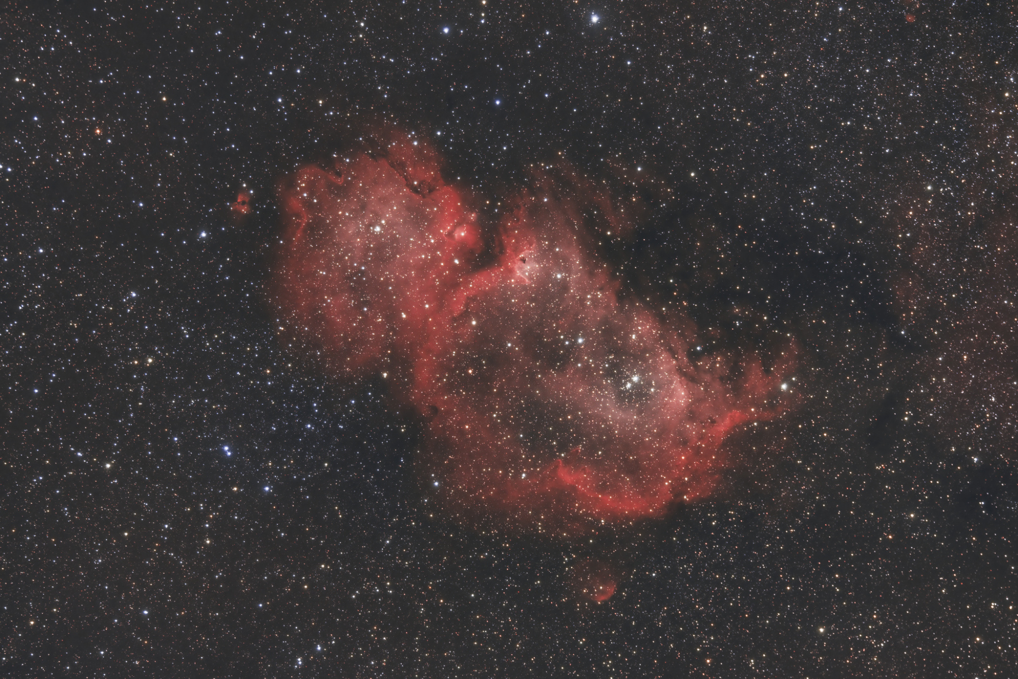 IC1848 23 01 20-2048.jpg