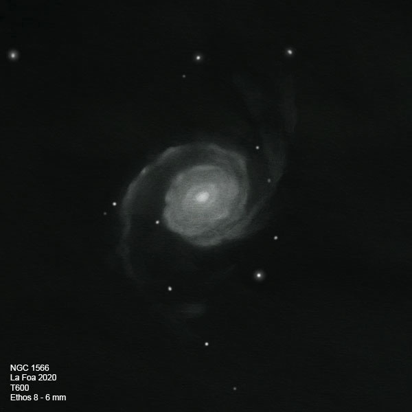 NGC1566_20.jpg.581756ad1851024622a8305a7d2ecbc8.jpg
