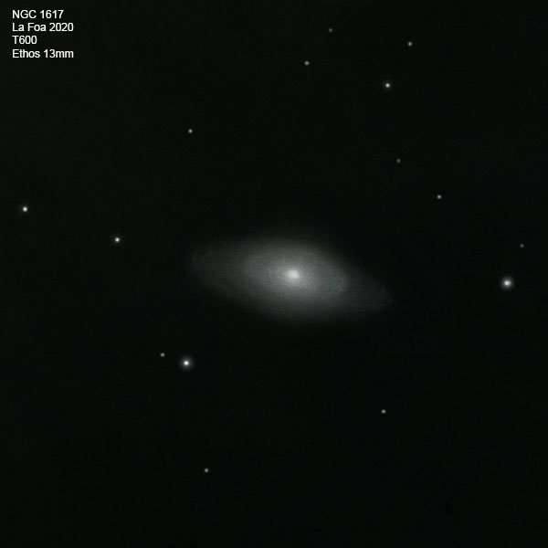 NGC1617_20.jpg.483b9e607750c31c6f2ea47b2b726a46.jpg