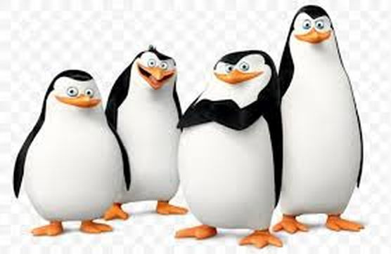 my-name-is-kowalski.jpg.ba077027907620aa3a4f786bdb6f4eb8.jpg