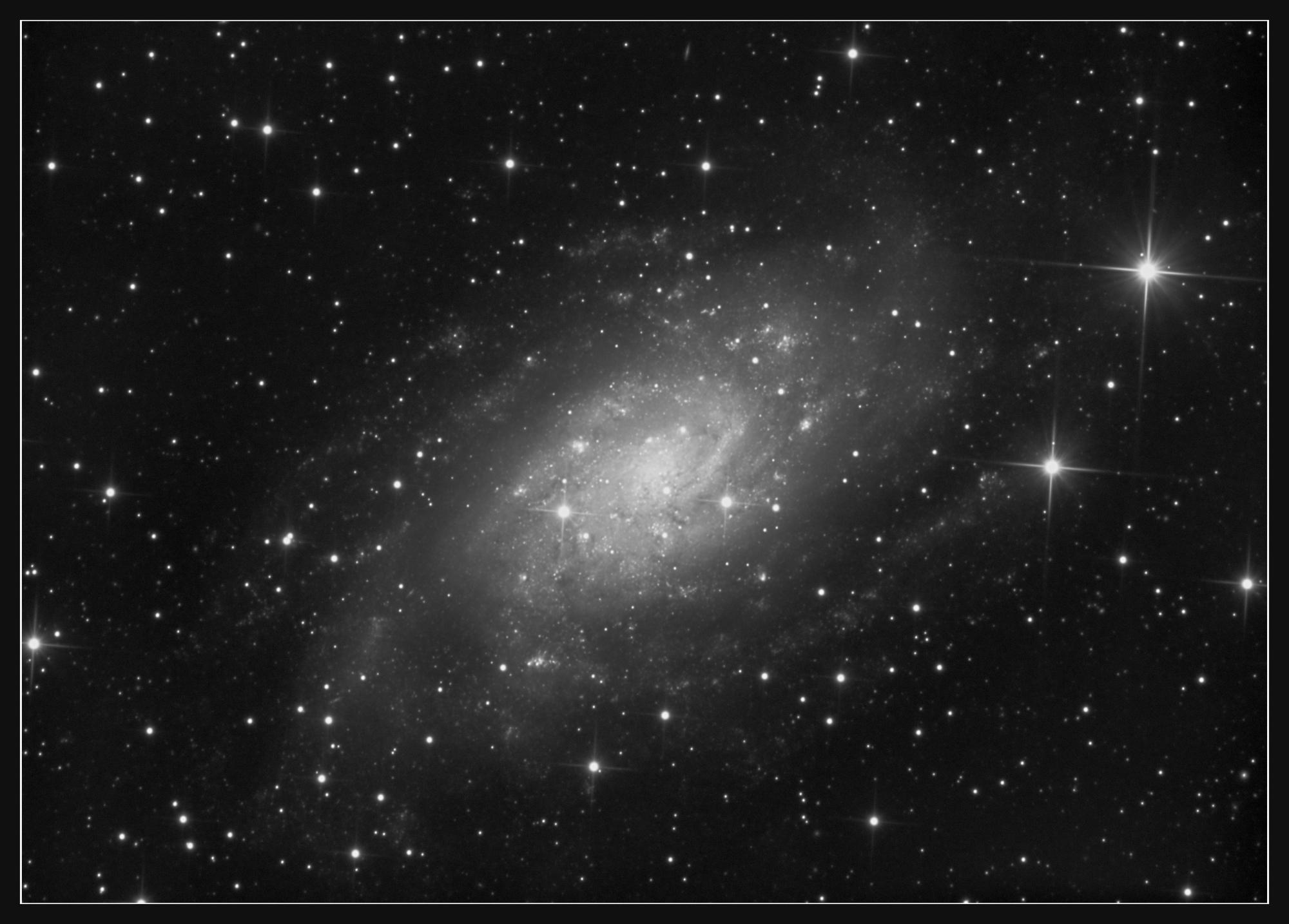 5e3728a0988fc_NGC2403_202001_6.5h_Pix_c.thumb.jpg.549f53ffe9aa64b4473e80e98341cced.jpg