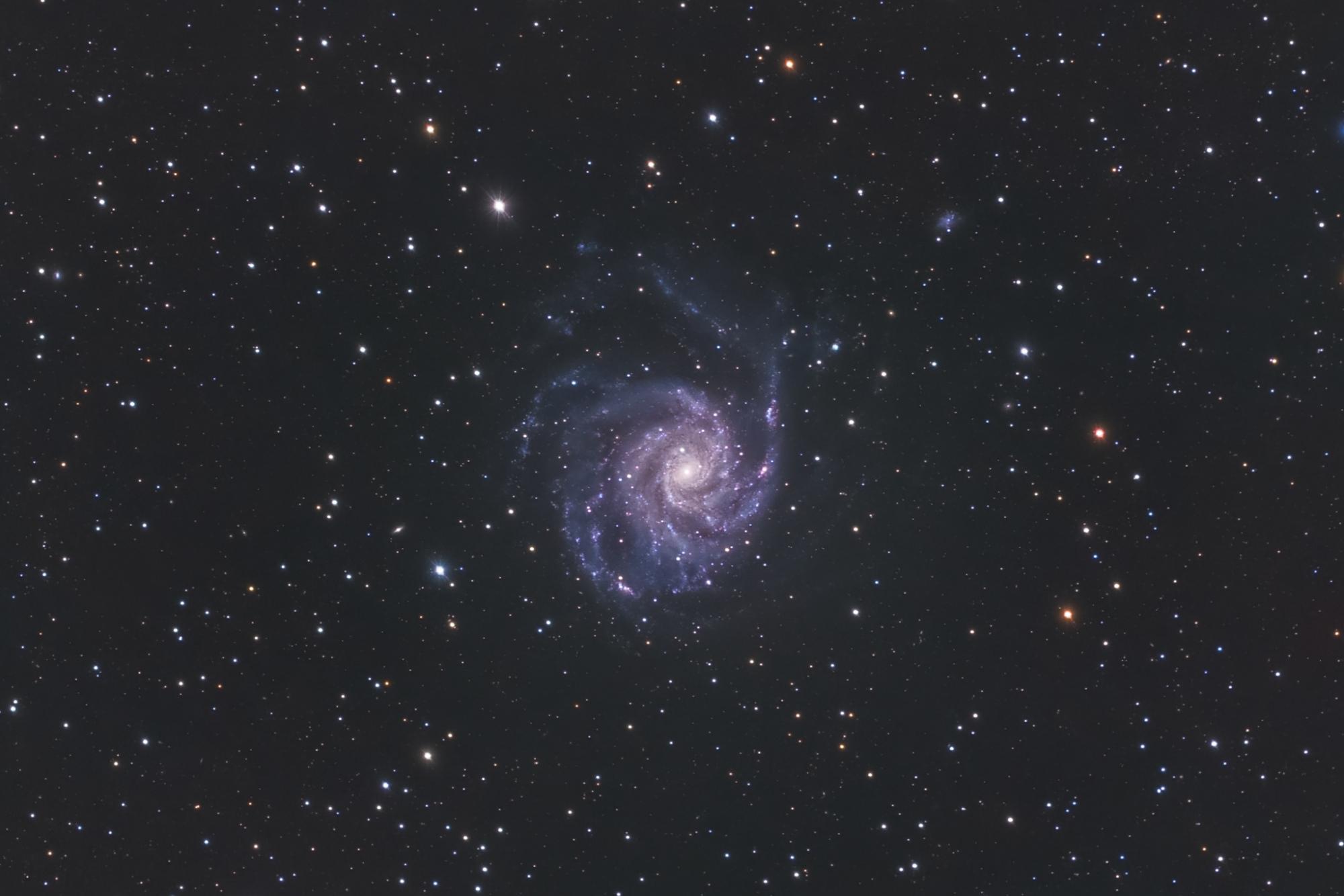 M101-2048-crop.JPG