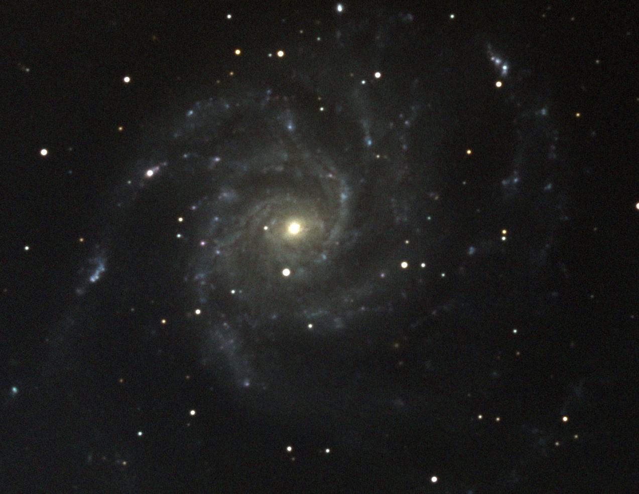 M101-H@RVB.jpg.e4aa960f06f2355bc47afa728cef3b4c.jpg