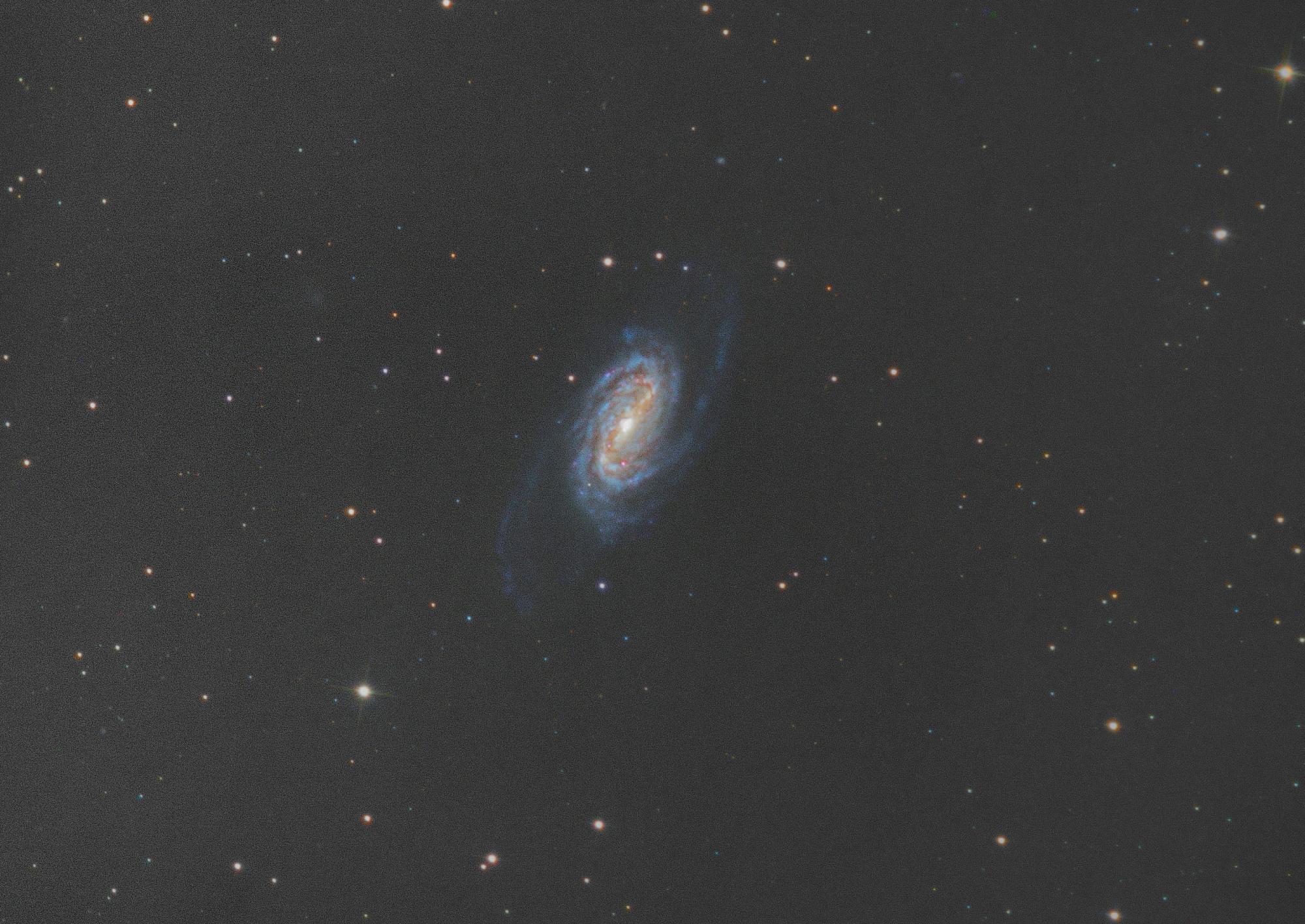 NGC_2903V3.thumb.jpg.9062992d7f0958aaa216ed55166d7044.jpg