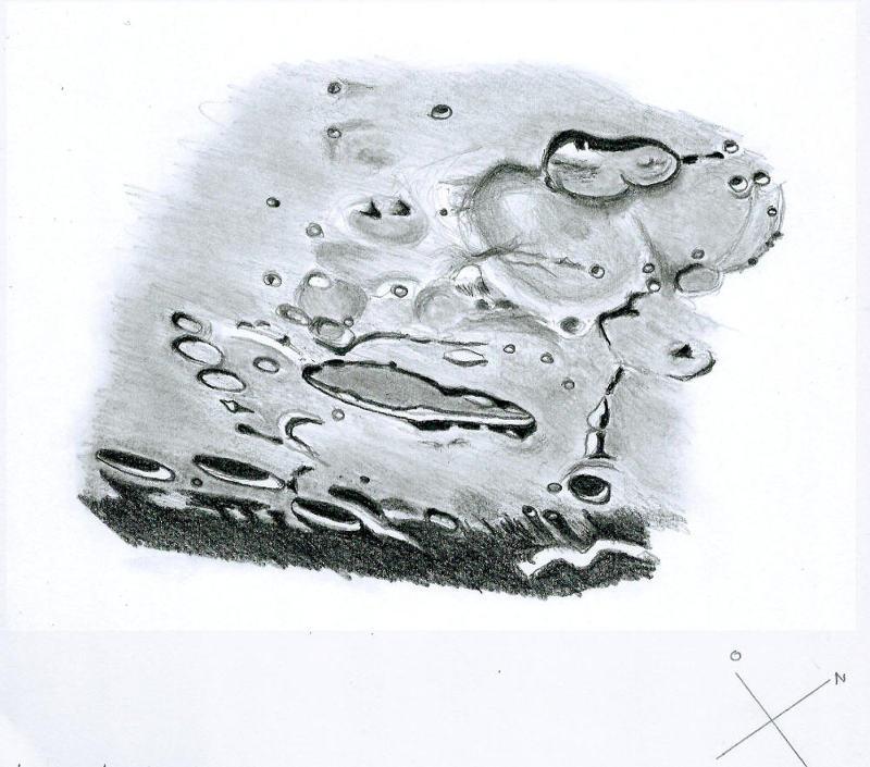 Schiller_05202020.jpg.4fd43835d86c5f0885cf4980c0ccb8d8.jpg