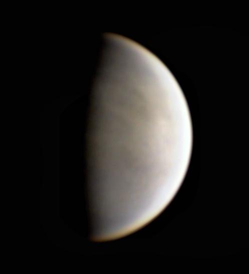 VENUS-LUCCATHALA.jpg