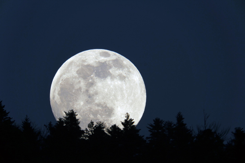lune 08.02.2020.jpg