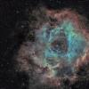 NGC 2237 - Nébuleuse de la Rosette (Ha-SHO)