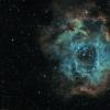 Nébuleuse de la Rosette en Ha-SHO (NGC 2237)
