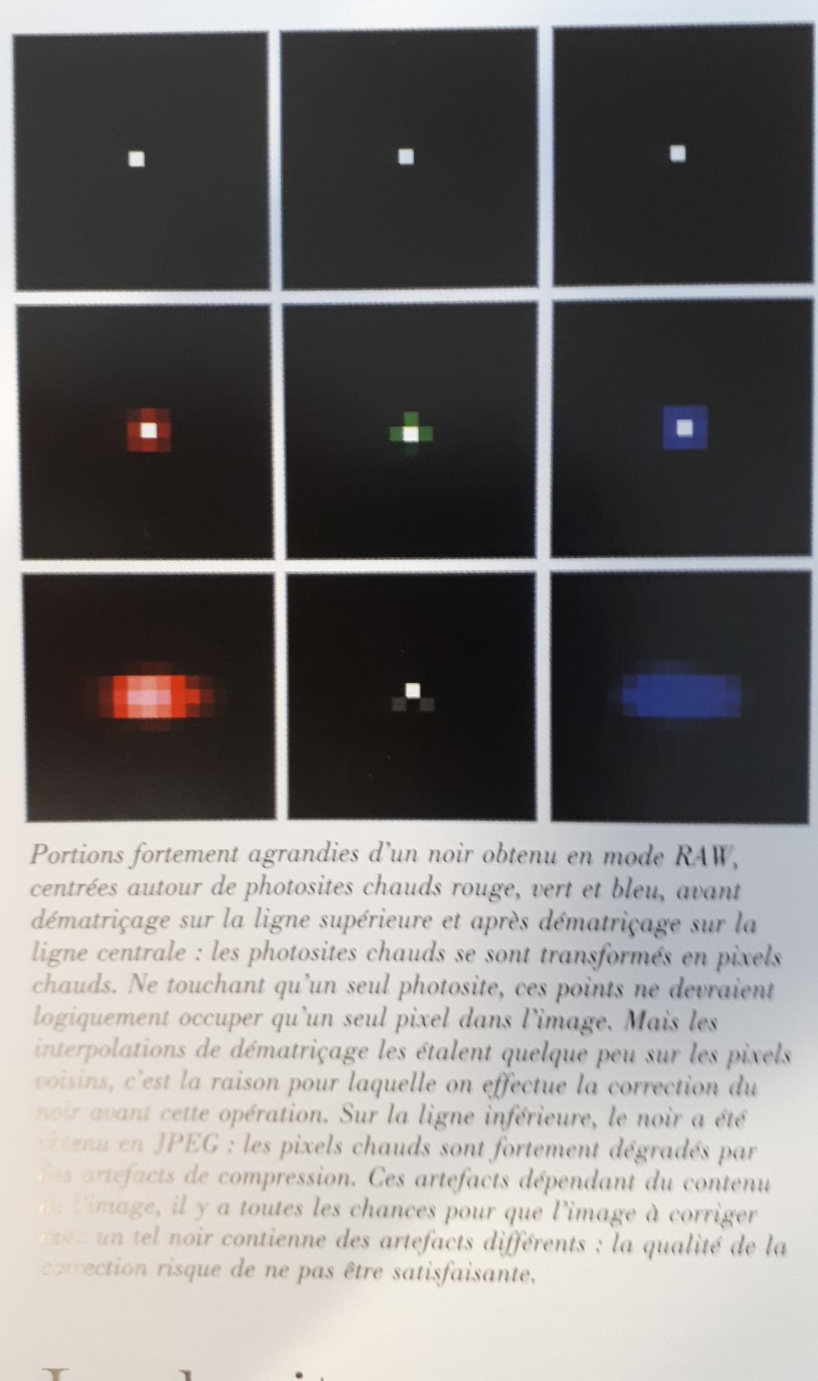 5e65fa4b3d963_pixelchaud(3).thumb.jpg.43f88674da0bfebb1a2d5a5eb73b923f.jpg