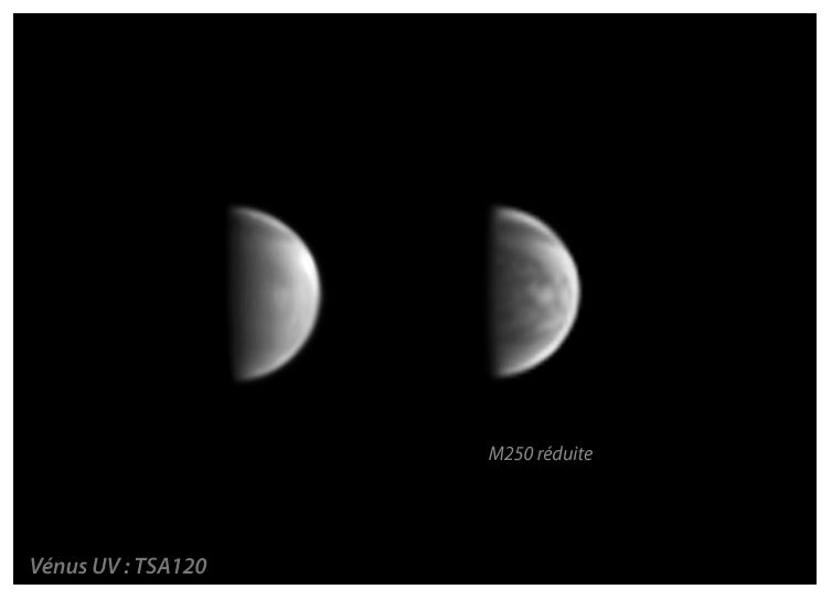 Venus Franck 2.png