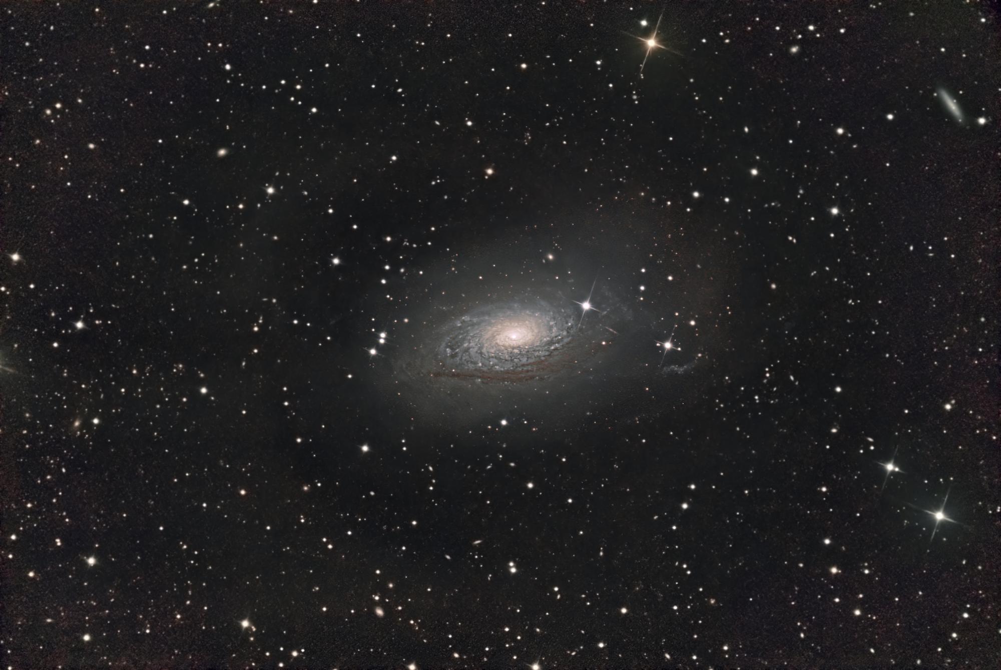 M63 TOSI (2).JPG