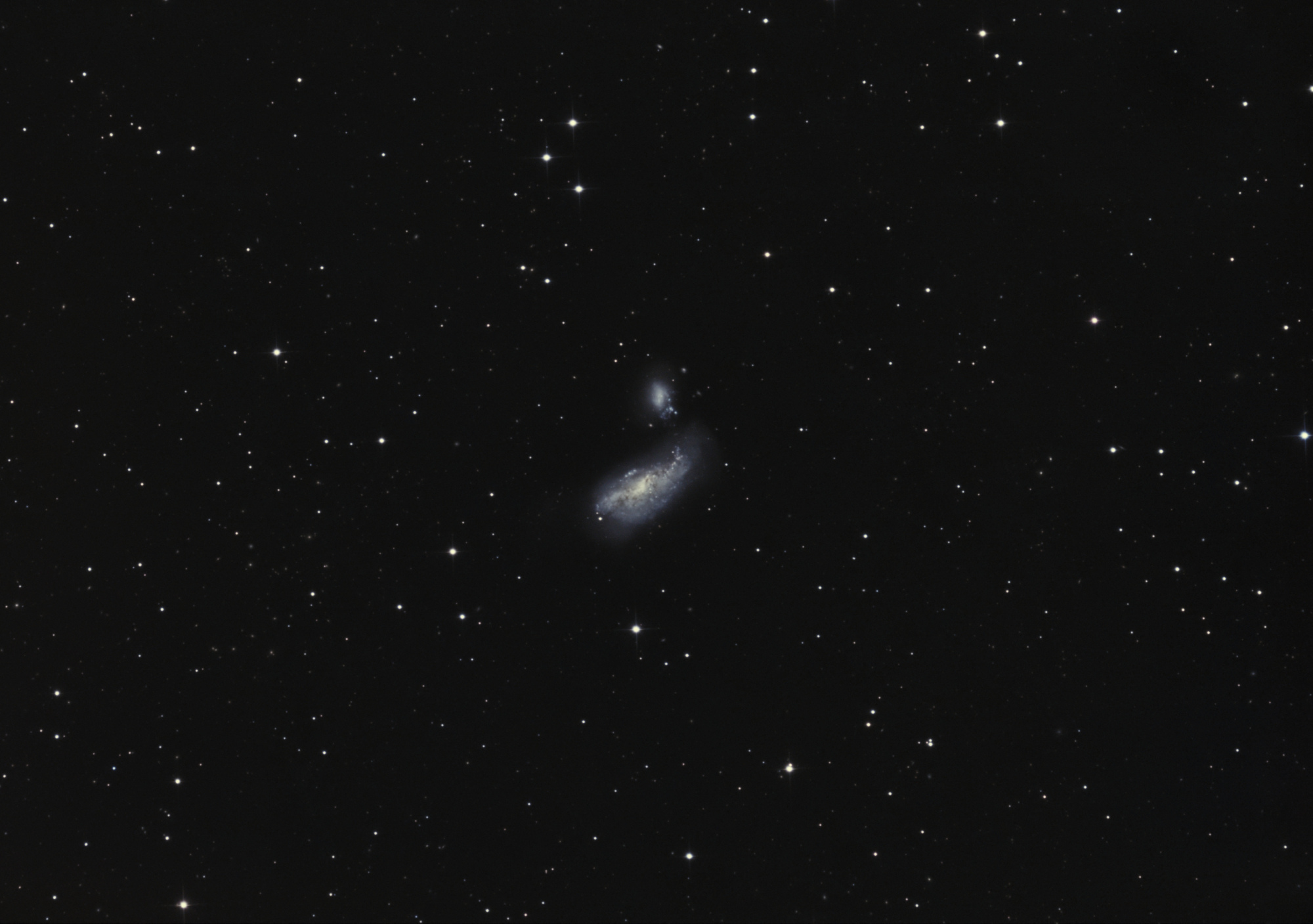 5e80afd88f87e_NGC4490pix.thumb.jpg.116b22fa620ca3dd0ebf23ac19024a5a.jpg