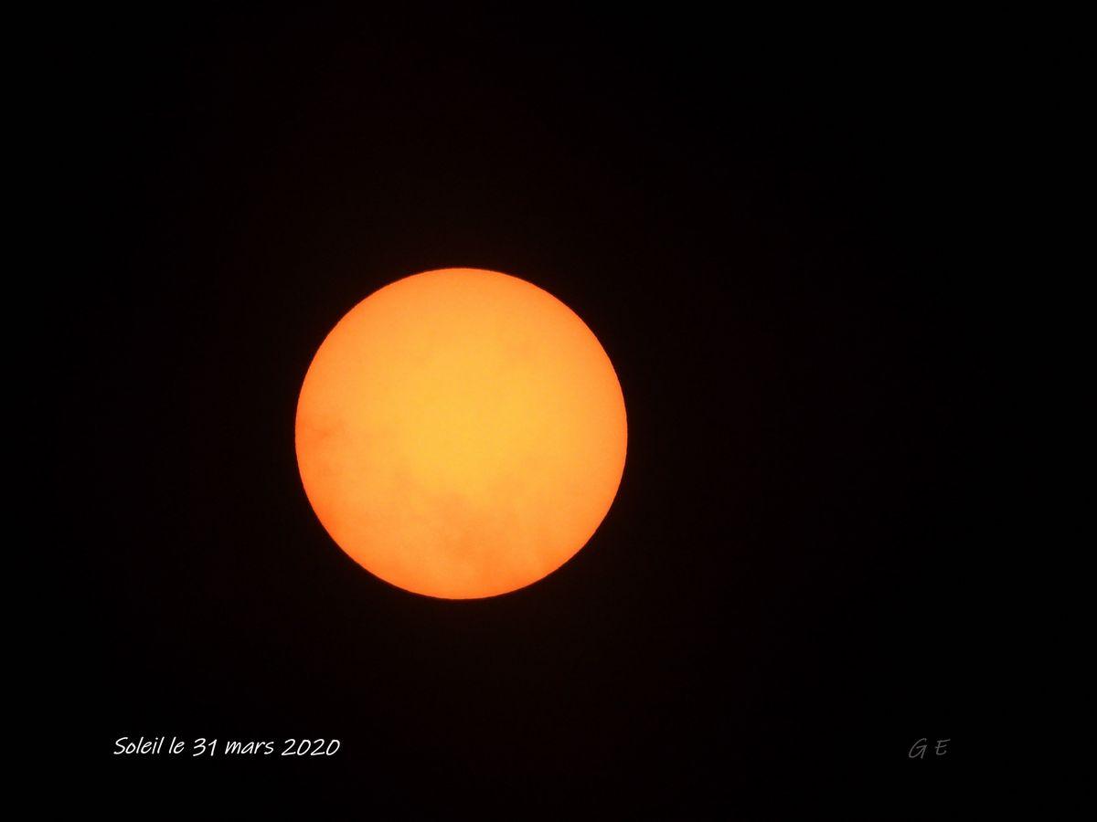 DSCN1150 soleil 31 mars 2020   GE-nano 1200.JPG
