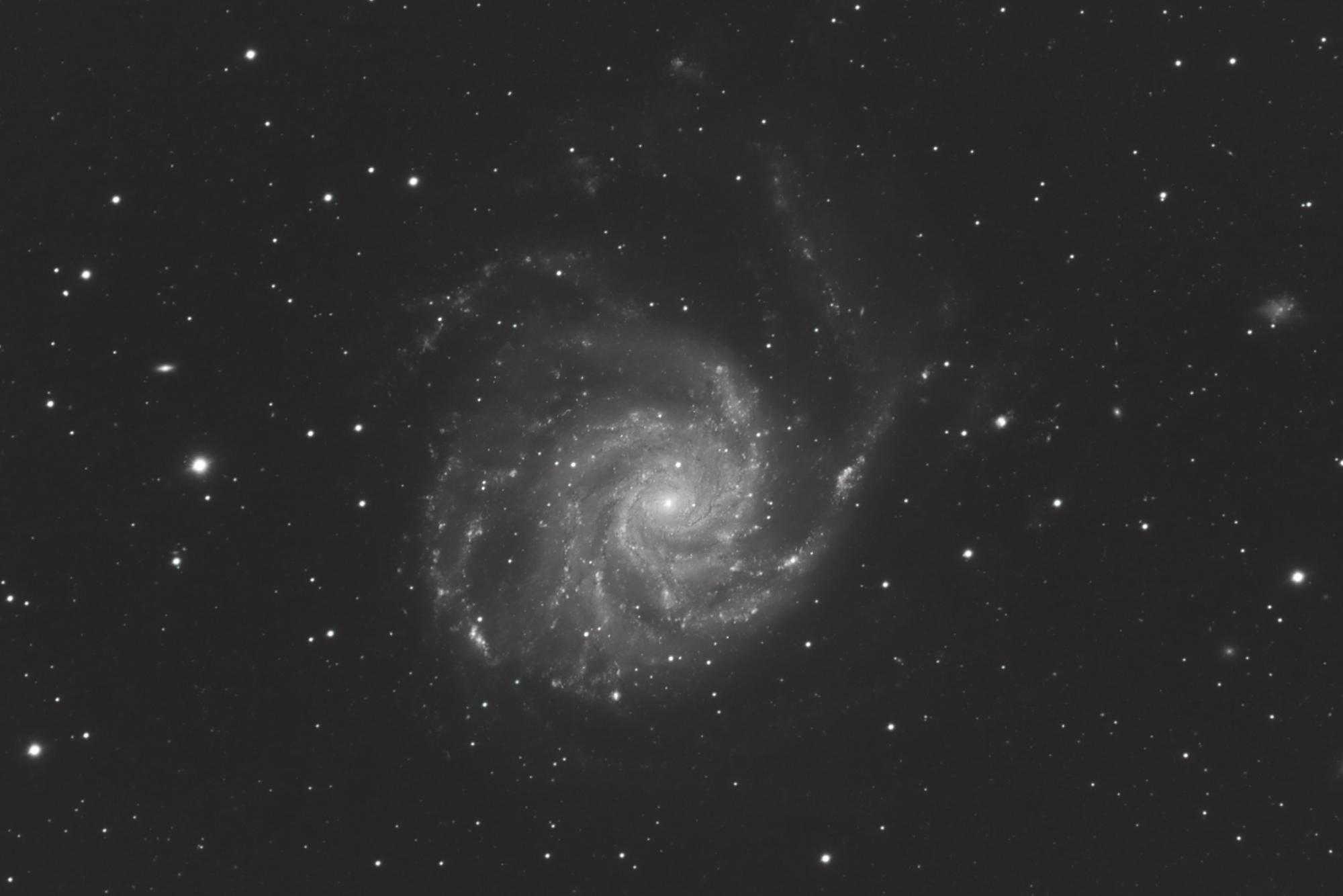 M101-L-2048-crop.JPG