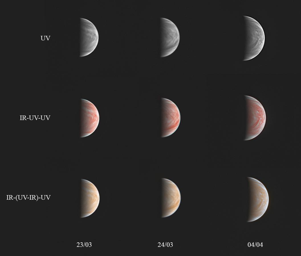 planche-Vénus-annotée-web.jpg