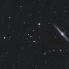 NGC 4565.png