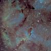 IC1396 - Nébuleuse de la trompe d'éléphant (Ha-SHO)