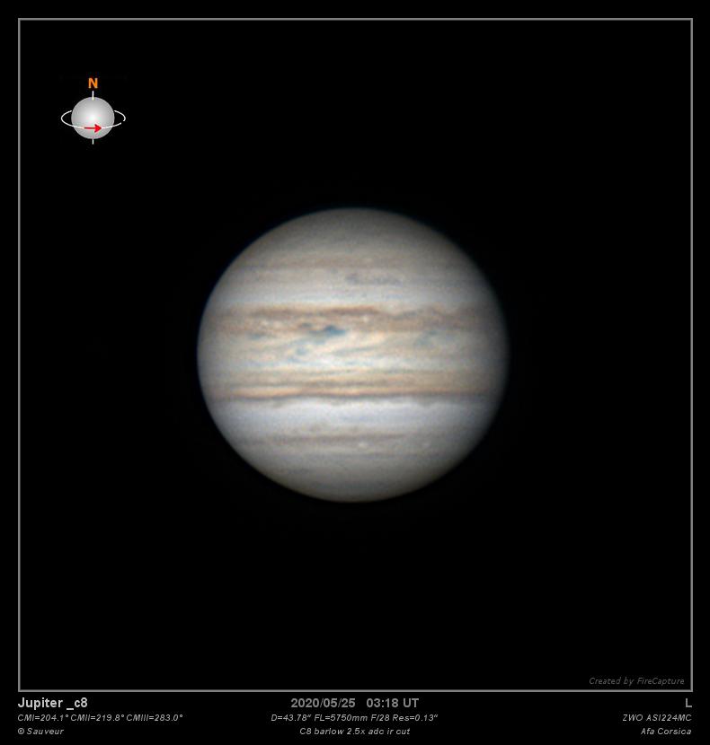 2020-05-25-0319_7-6 images-L_C8 b 2.5x_lapl4_ap211-belle_web.png