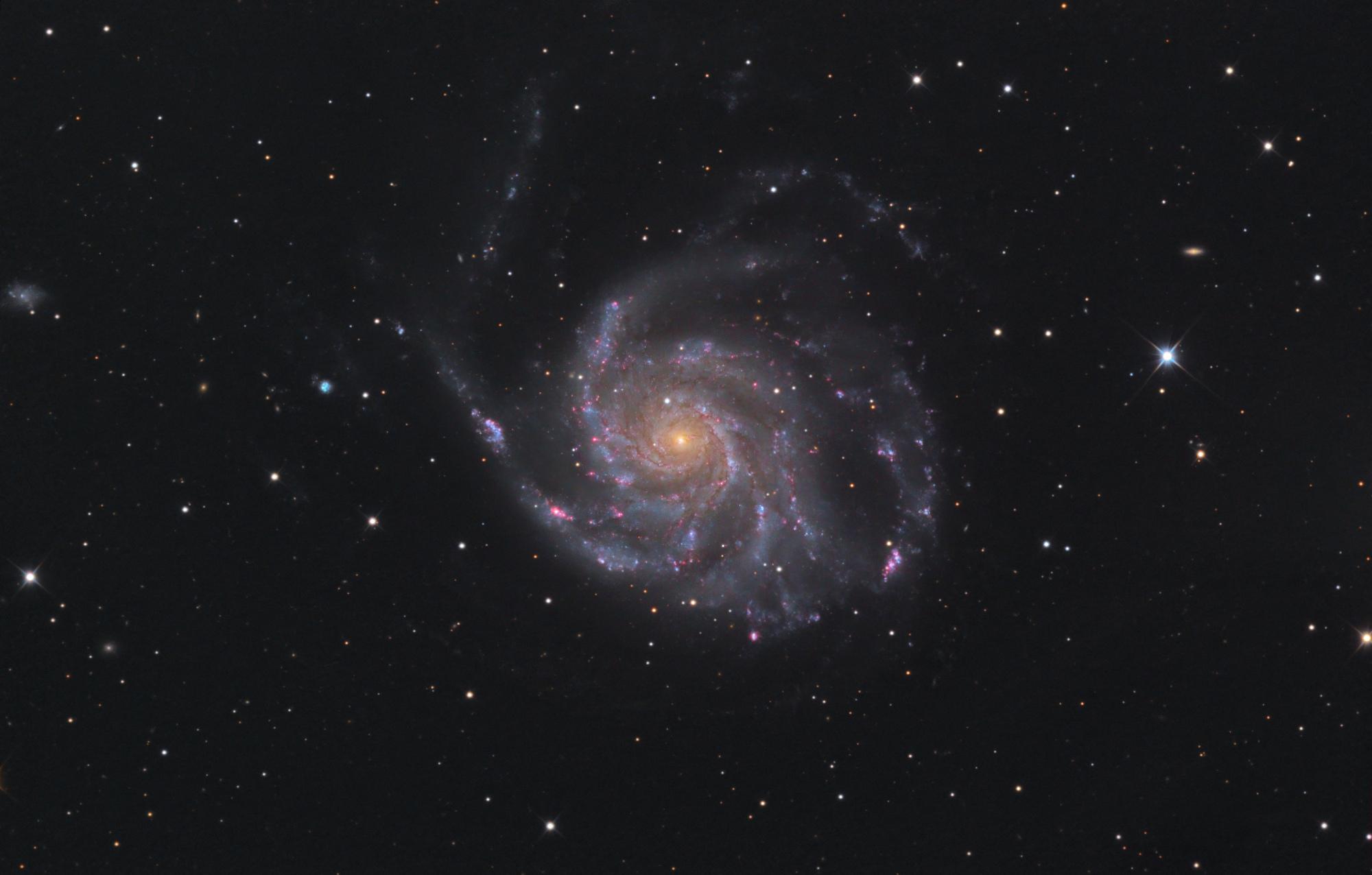 M101-Newthom-T-Bexant.thumb.jpg.e11d7f8091fb101c14516e08a4e13e07.jpg