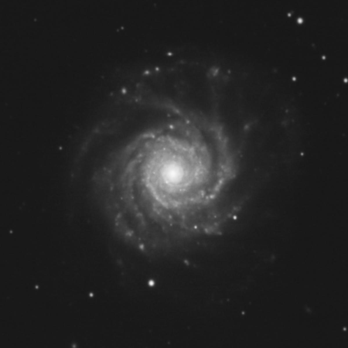 NGC3938.jpg