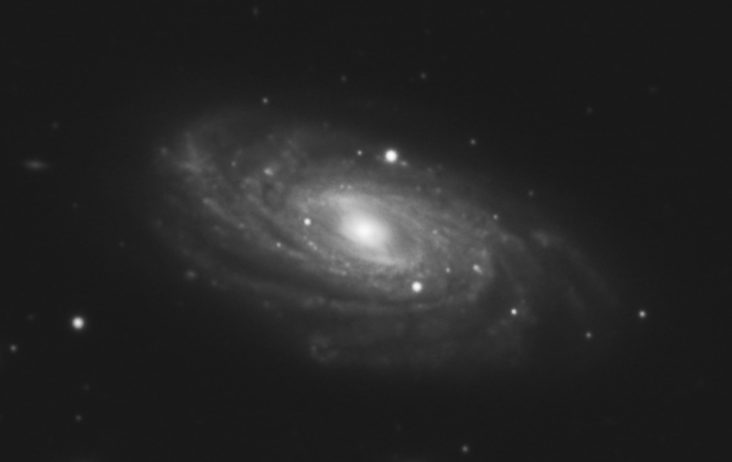 NGC3953.jpg