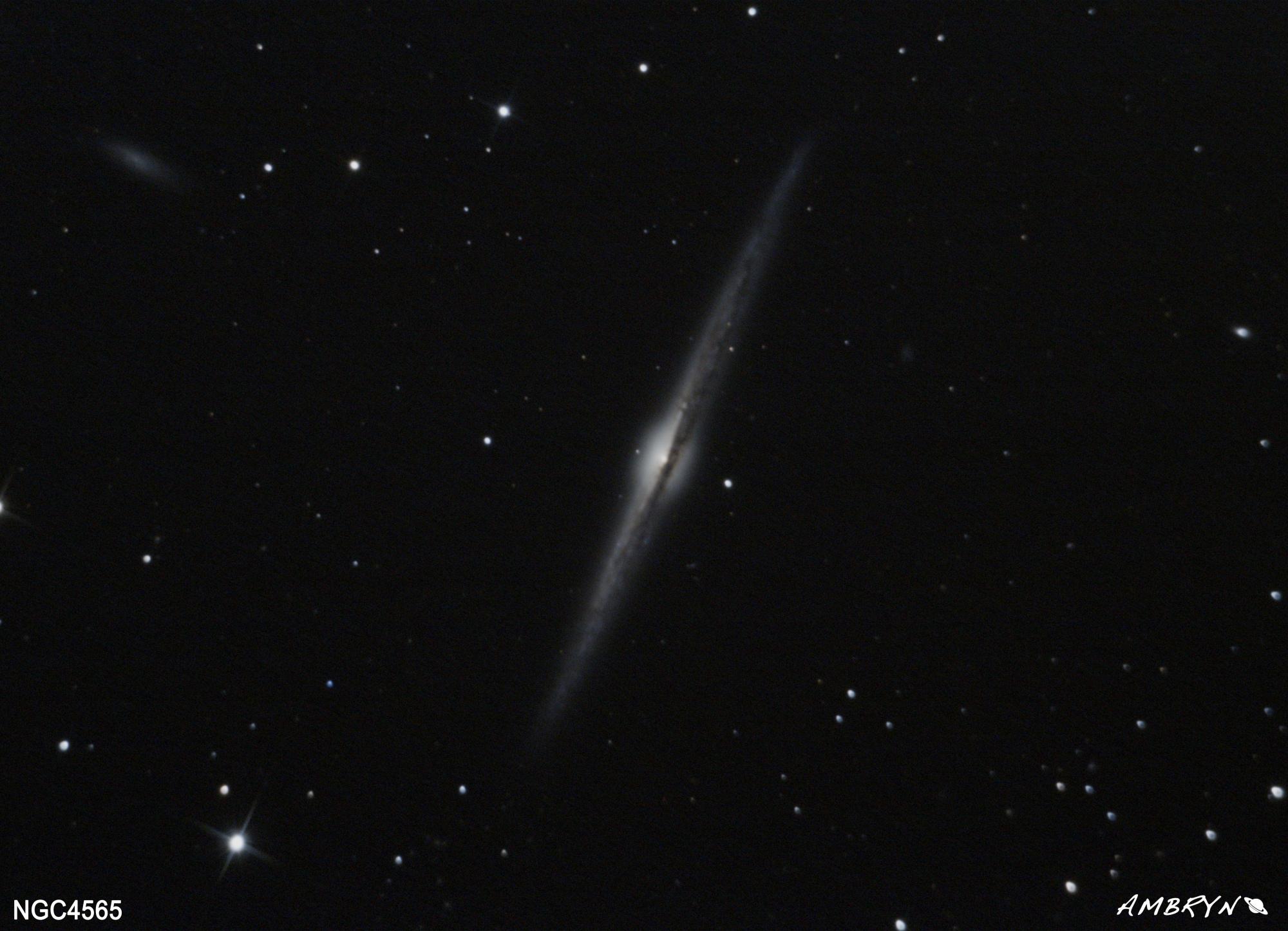 NGC4565_plein_ciel.jpg