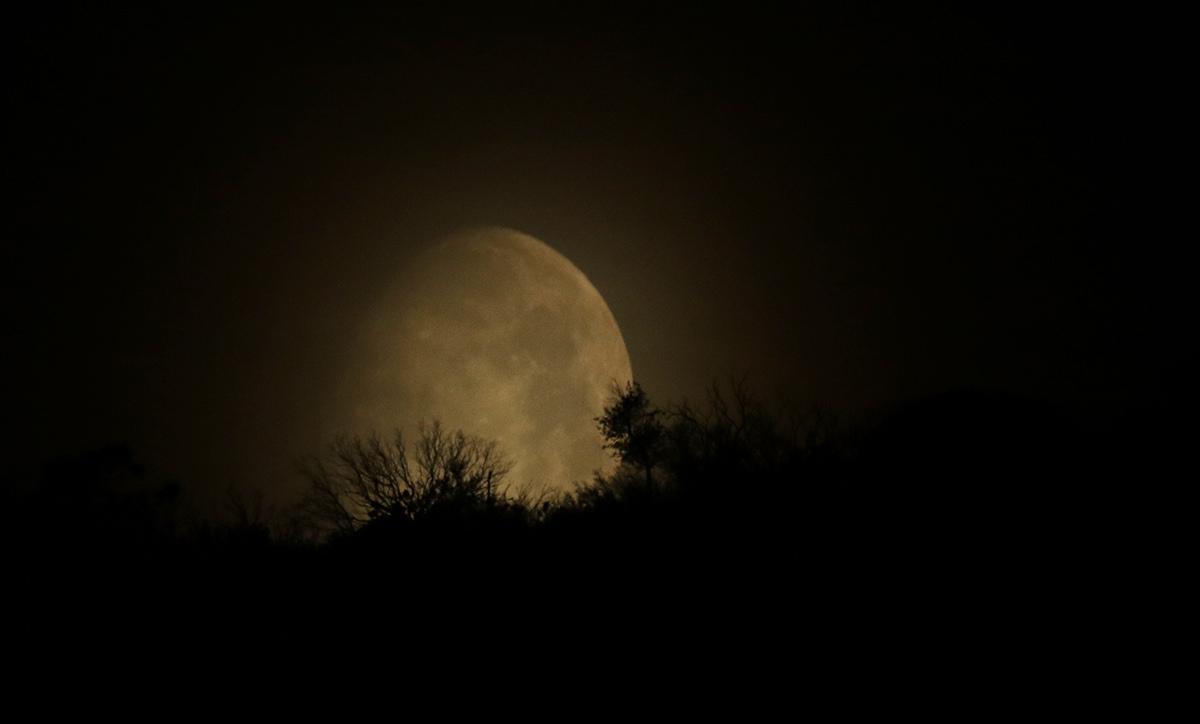 la lune le 04/05/2020 (52164)