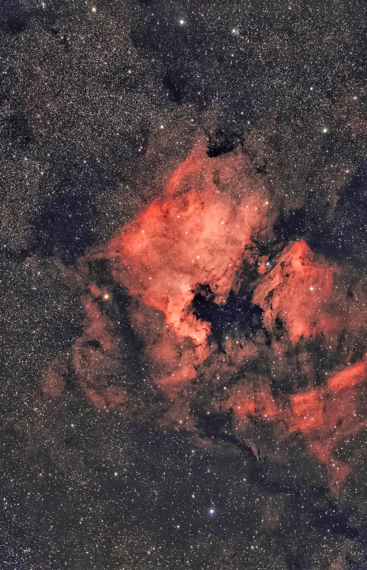 NGC7000-Pelican-bis_resultat.jpg