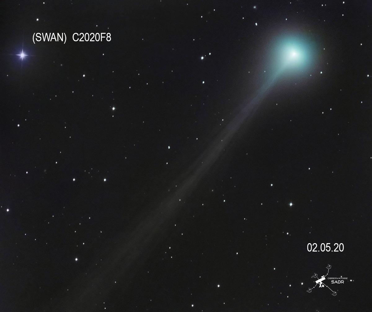 Comète C2020F8 (swan) 020520  Djp