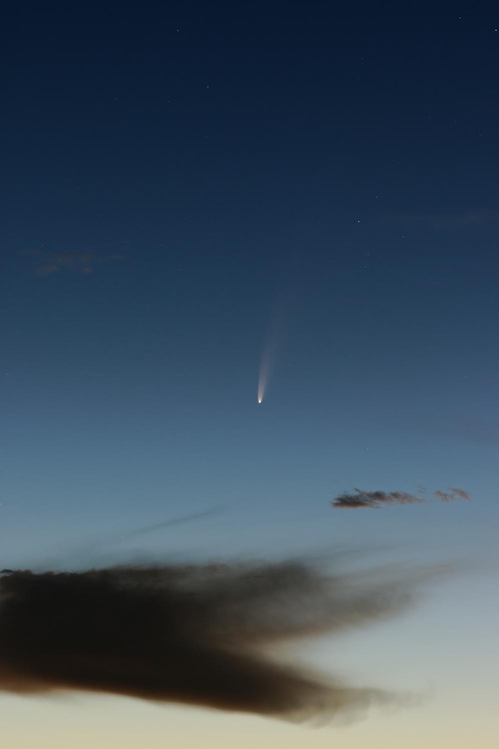Comète C2020 F3 NEOWISE.jpg