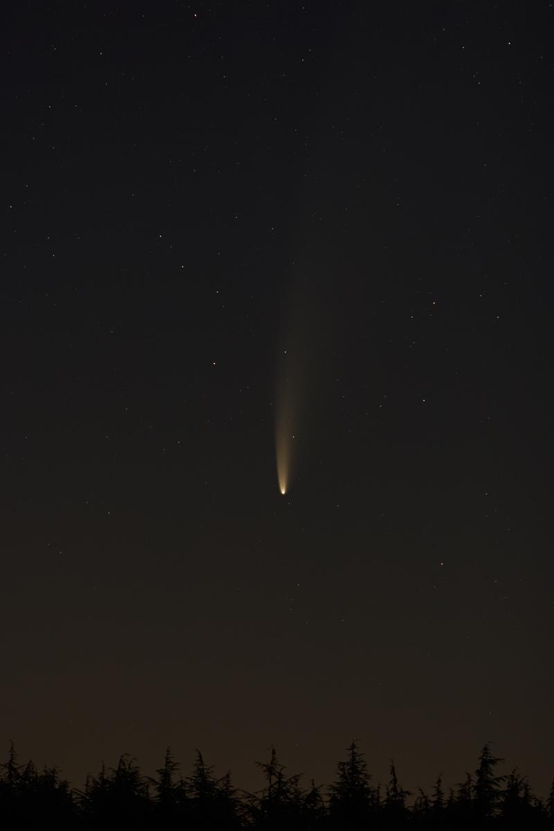 1 - Comète C2020 F3 NEOWISE le 12.07 80D - 135 F2L - Lever.jpg