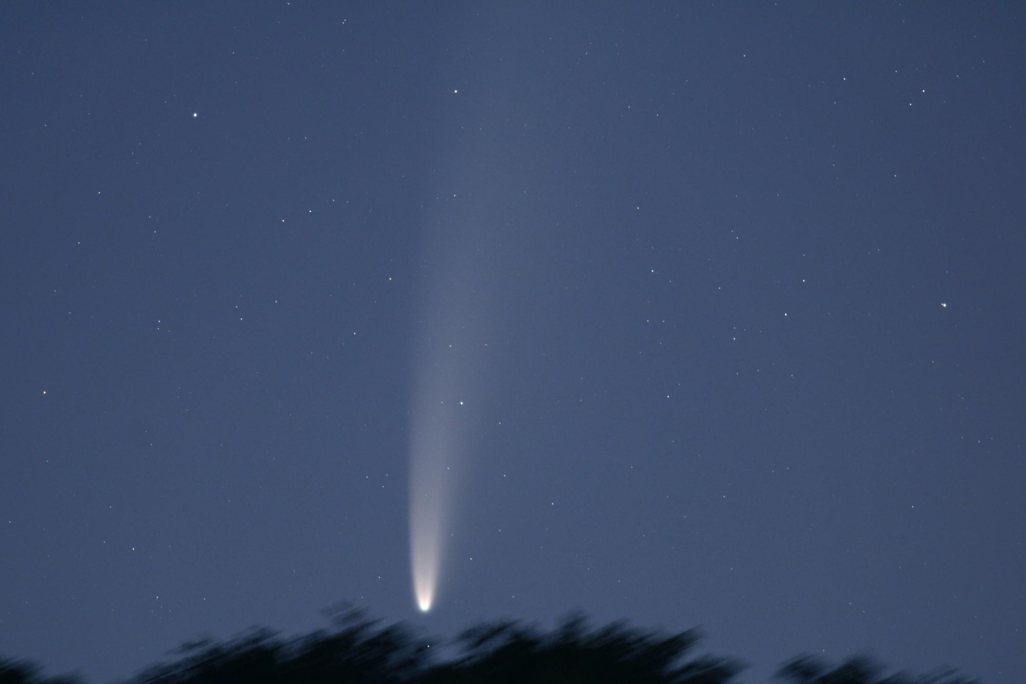 5f0bb08a48ac5_NEOWISE6883B1send.thumb.jpg.dacc51180fe17e282cbb5aab3366db5c.jpg