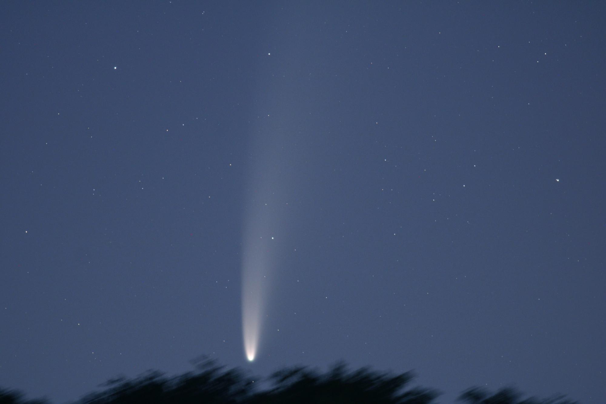 NEOWISE 6883B1 send.jpg..jpg