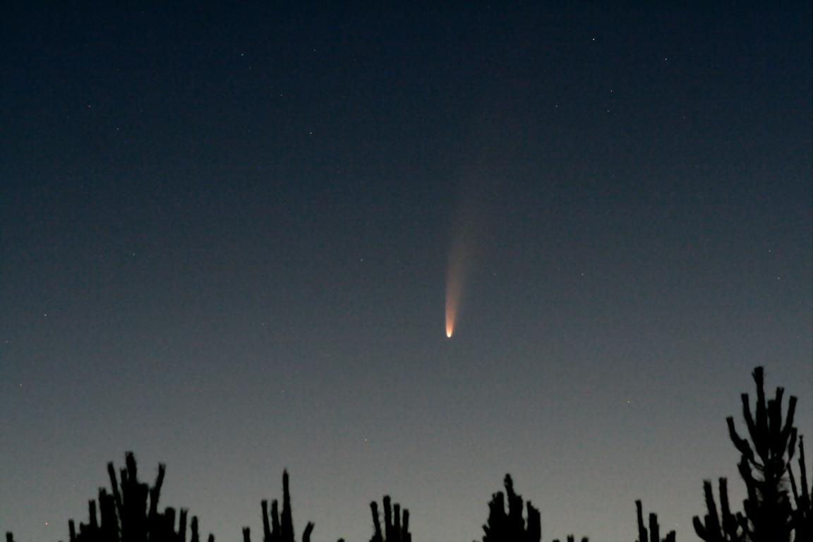 C2020-F3-NEOWISE_1.jpg.89408976fa093fd2466750dcc17df4b2.jpg