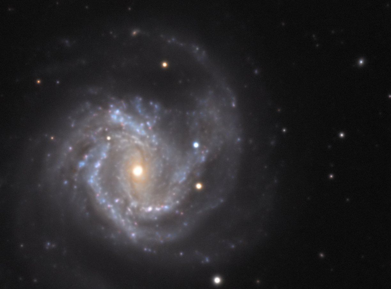 M61_LRVB_SN2020jfo_2.jpg.def8d50df11ce0ca9238345910b65c52.jpg