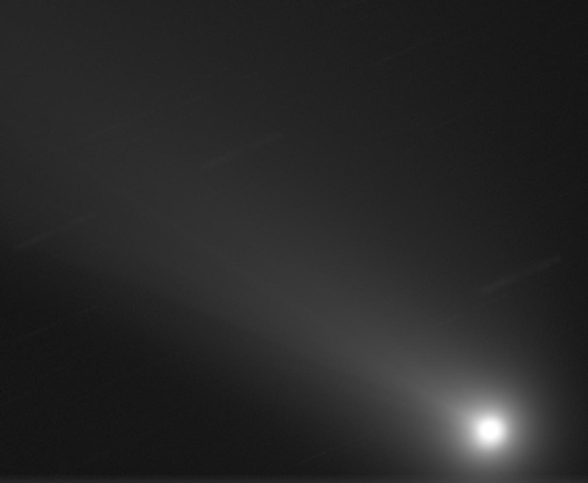NEOWISECROP.jpg