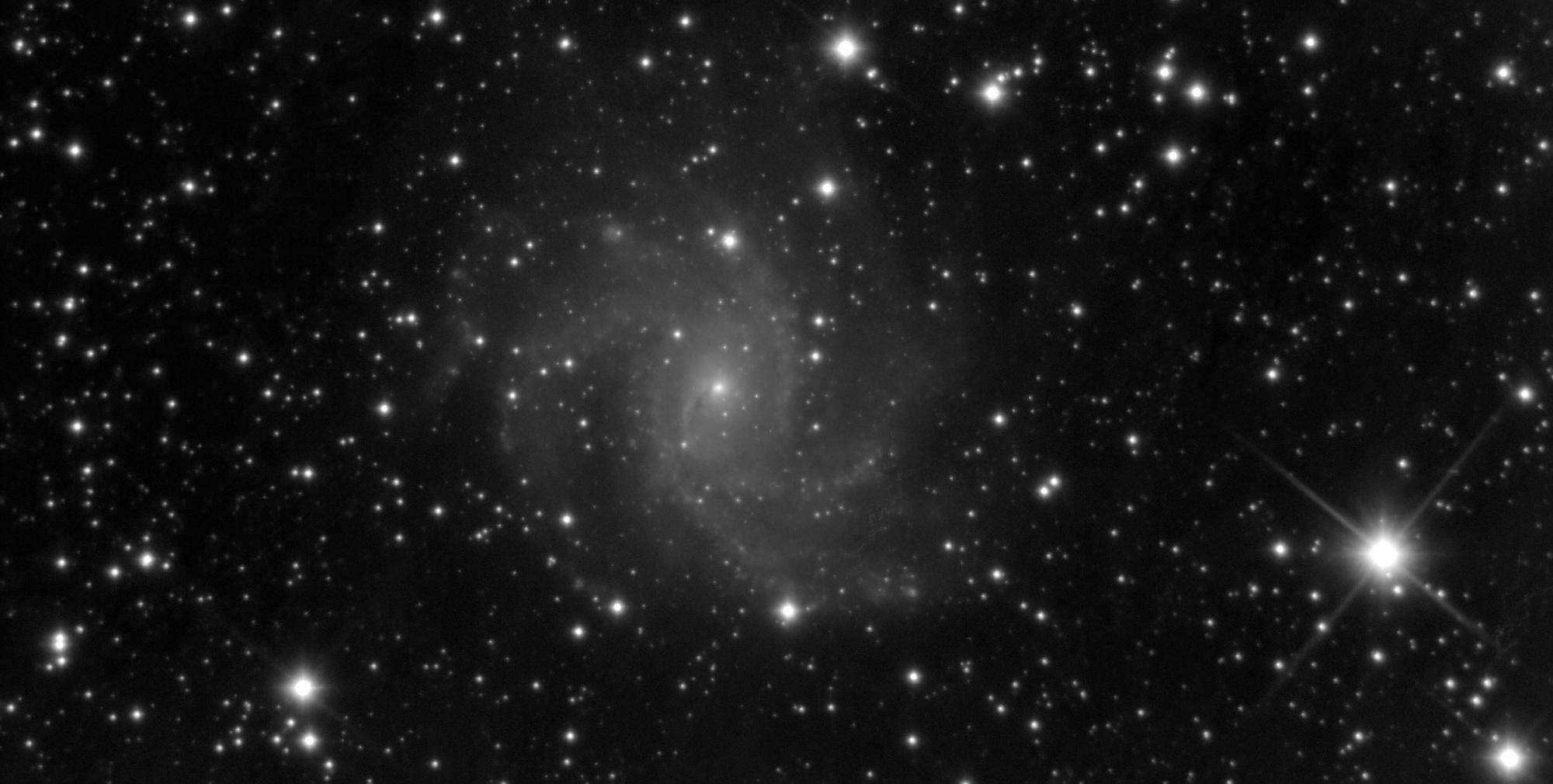 NGC6946-denoiselow-light.thumb.jpg.3e794e510fdbf7c067b0f69ab0a775d0.jpg