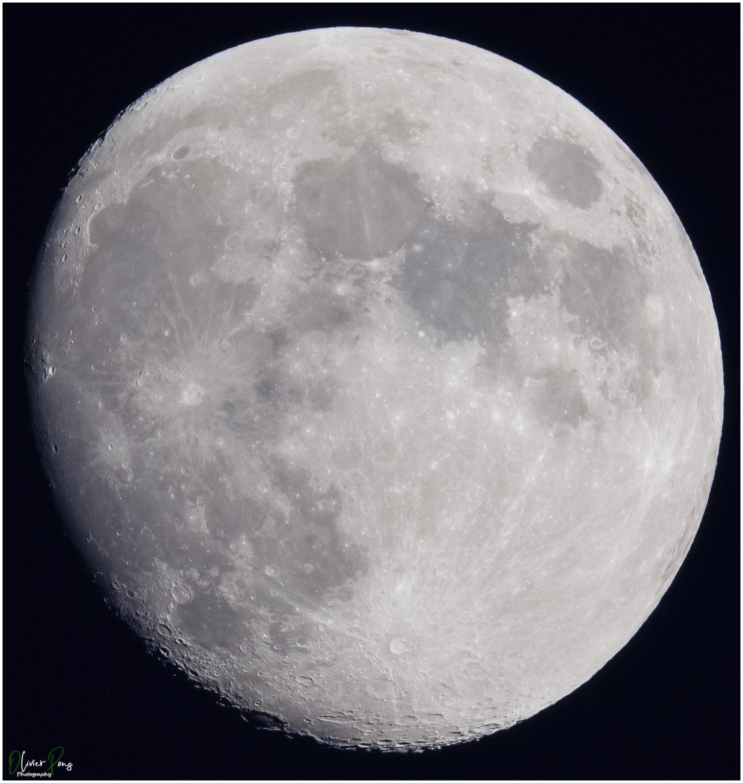 lune_600_fulwebl.jpg