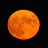 la lune le 08/03/202 (55520/21/65)