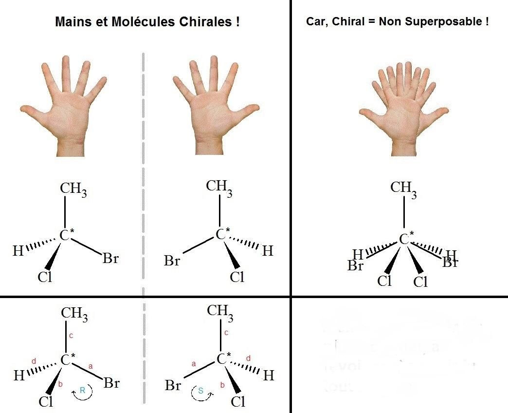 5f5b525a439c1_astuce_mains_molcules_chirales_dscripteurs_strochimiques.jpg.d4e20750f5a527e64d5ea36dd92fc8bb.jpg