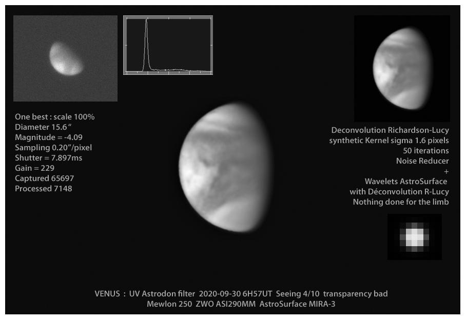 Venus_Best Legende.jpg
