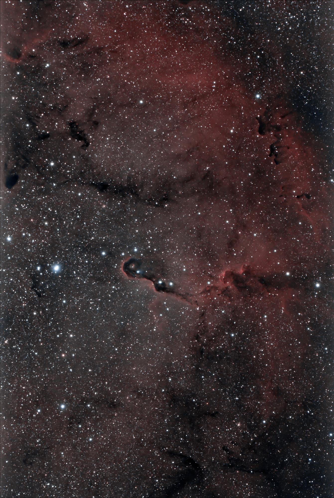 IC-1396_cs6-denoise.thumb.jpeg.60b0fc13793cc57f24bda0b56093ea01.jpeg