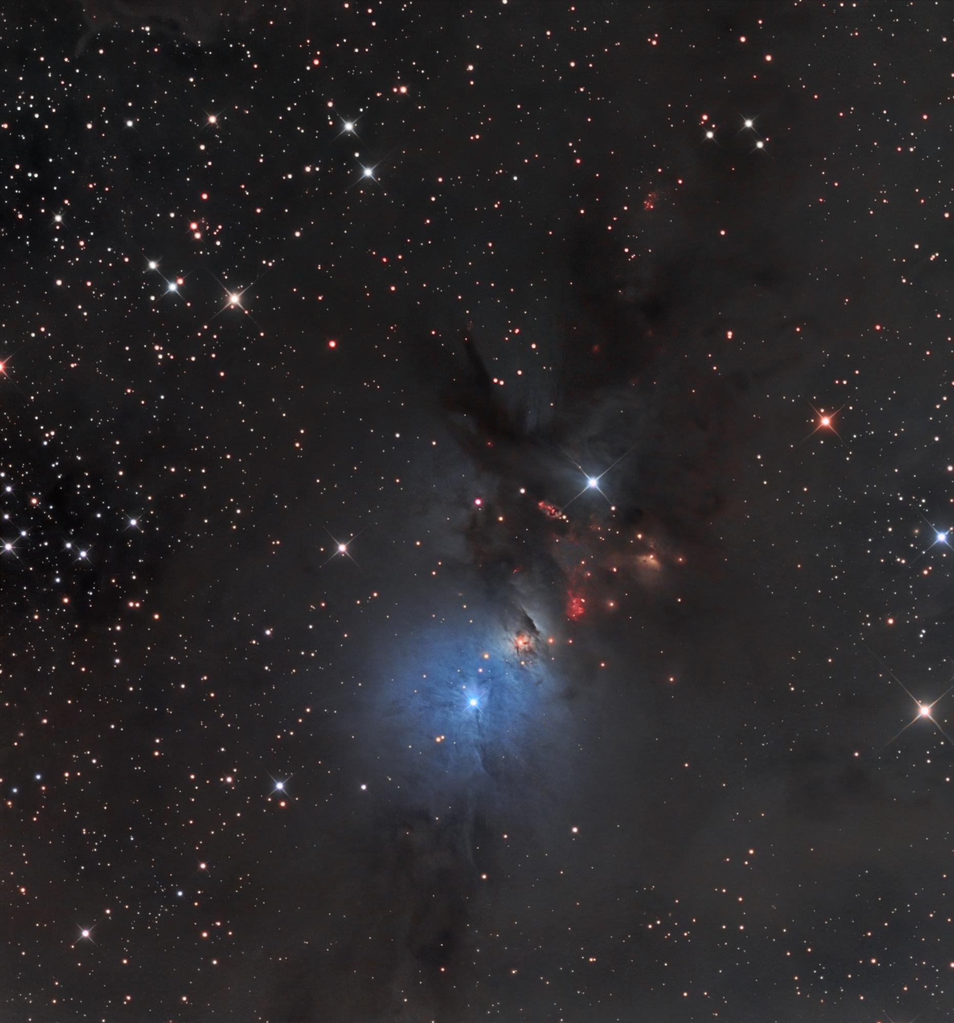 T Bexant - NGC 1333 - NEWTHOM