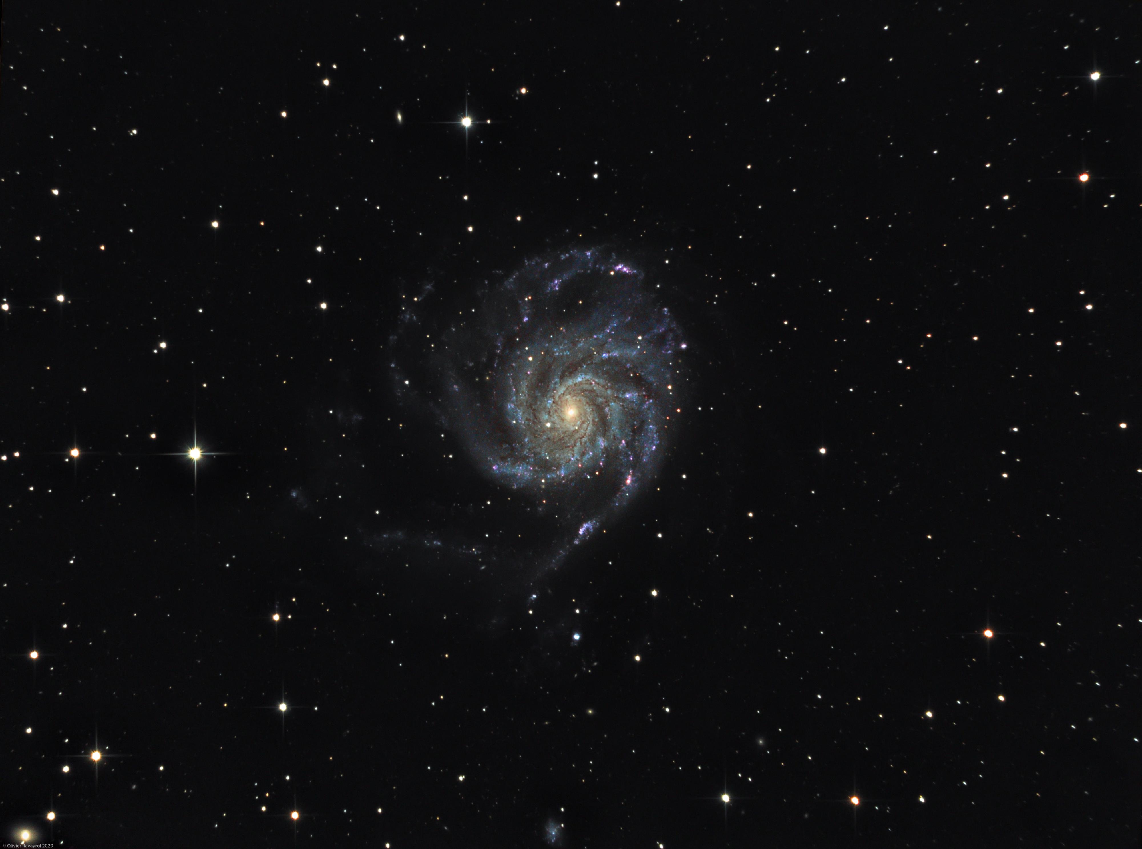 La galaxie du Moulinet (M101)
