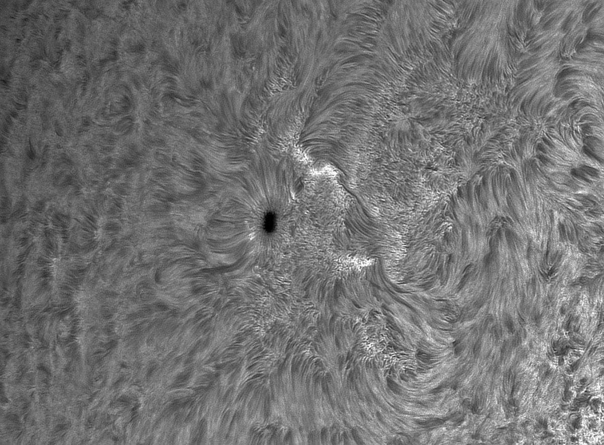 soleil-12nov20-e.jpg.58aac0897f93737be1c584e43c010a2f.jpg